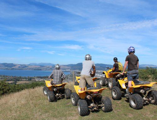 Awesome Quad Adventure!!