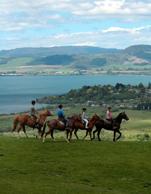 Rotorua Horse Treks