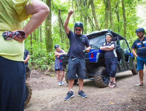 Unforgettable 4WD Experience